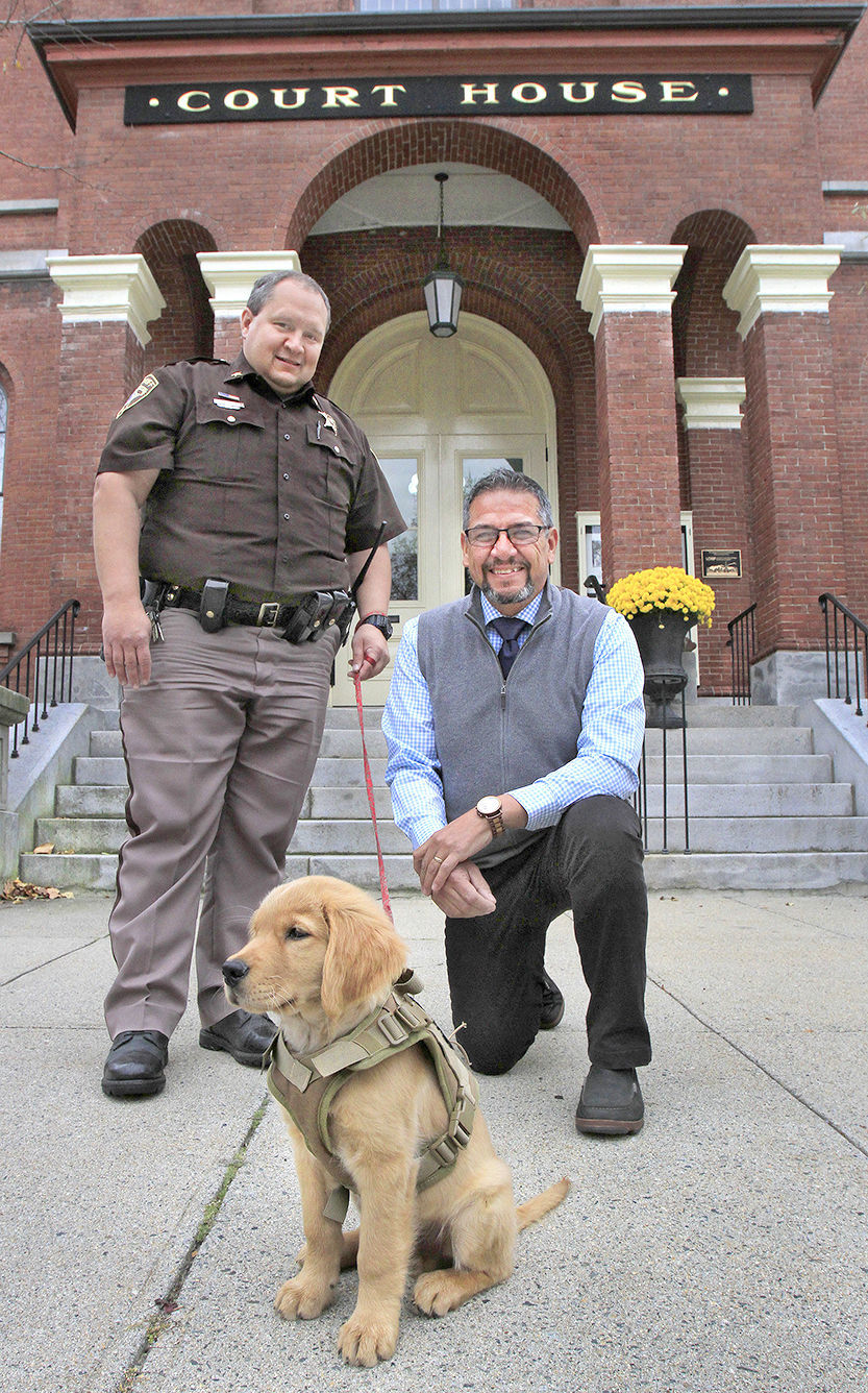 Deputy dog