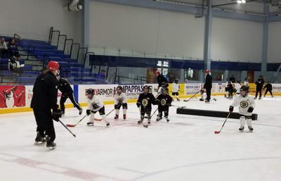 Little Bruins