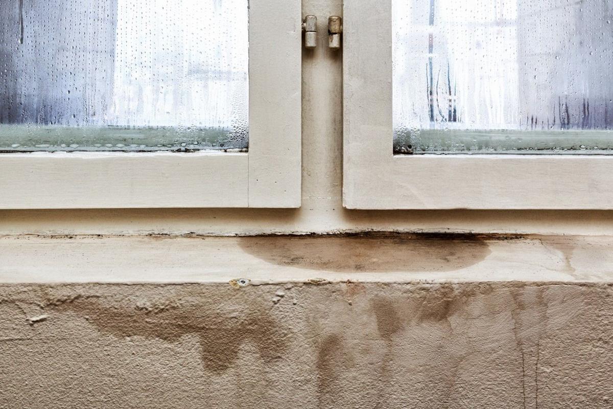 Damaging Basement Moisture