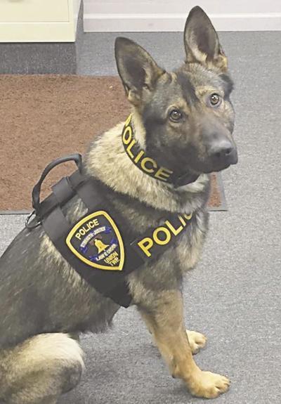 police dog od