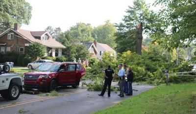 Branch falls on SUV; 2 injured