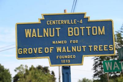 Walnut Bottom