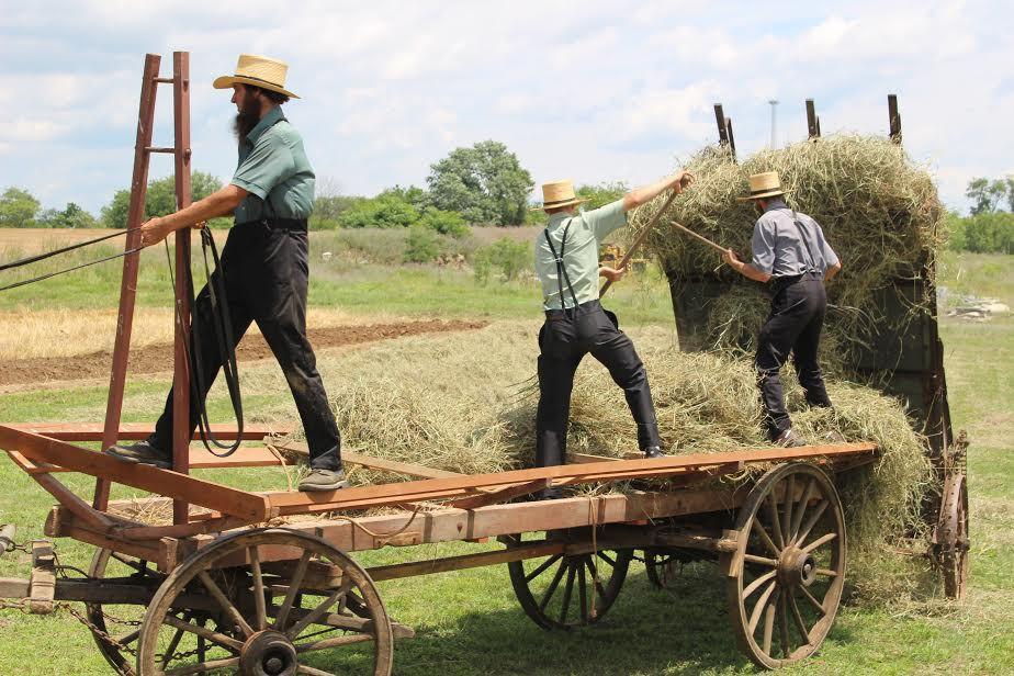 Newburg Rural Life Festival