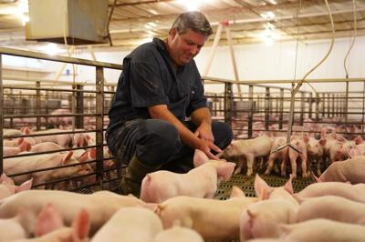 Pig Farmer of the Year
