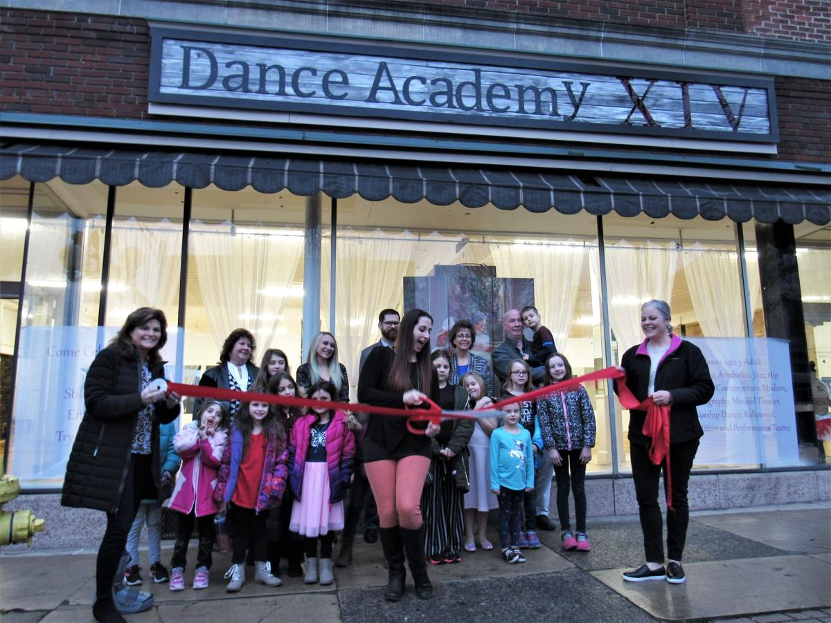 Dance Academy XIV