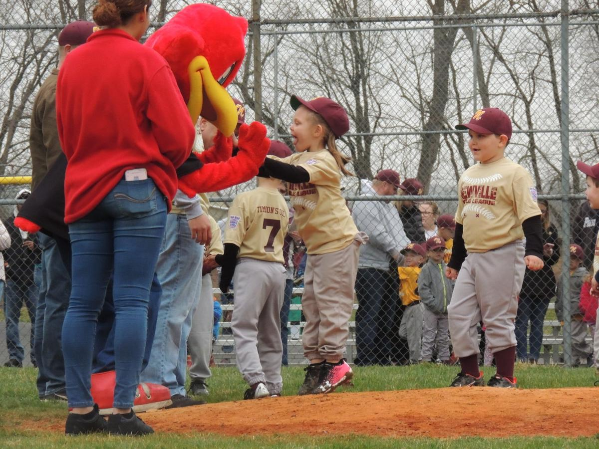 Newville Little League Opening Day
