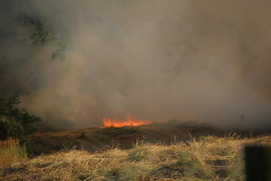 Hayfield Fire