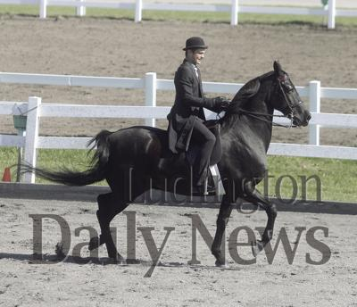Competing At State Equestrian Team Looking For Second Title In Two