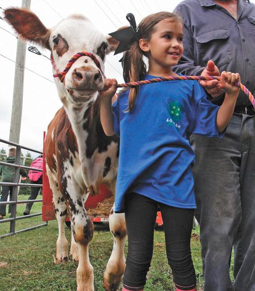 The Skinner Barn: 146th Oceana County Fair Underway