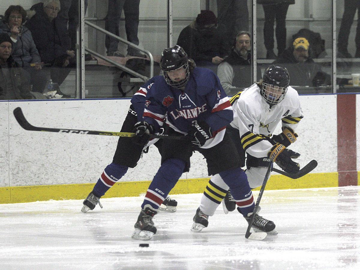 Lenawee at Manistee hockey