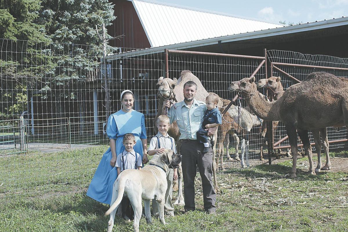 Michigan mason county custer - Marlin Troyer His Wife Savannah And Children Ray Tristan And Bradley Are Preparing To Launch Marlins Wildlife Safari On An 80 Acre Property In Custer