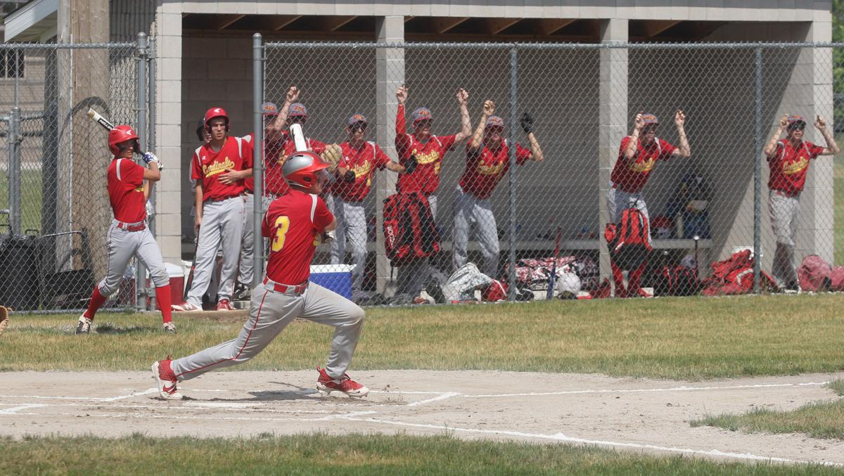 MCE v Mesick baseball