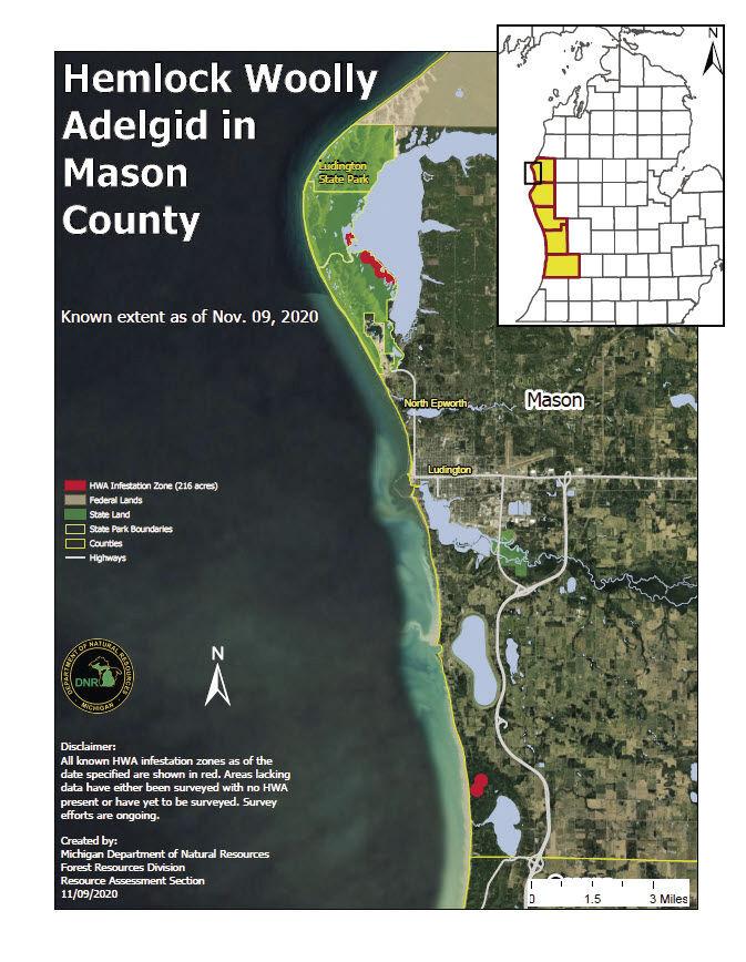 Hemlock woolly adelgid map