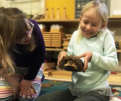 Learn about animals around the world in Old Saybrook
