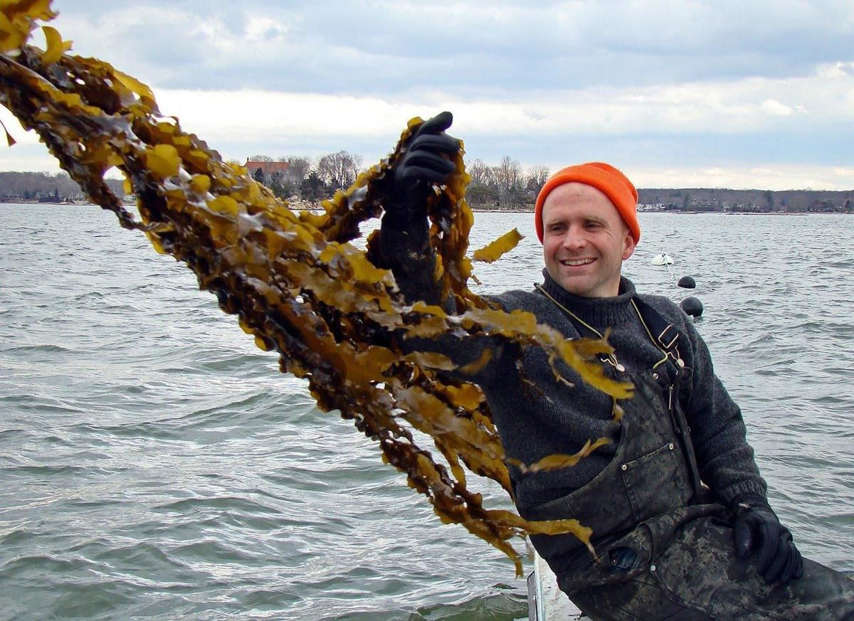 Eat like a fish: Shoreline man shows you how with kelp farming, book and Greenwave