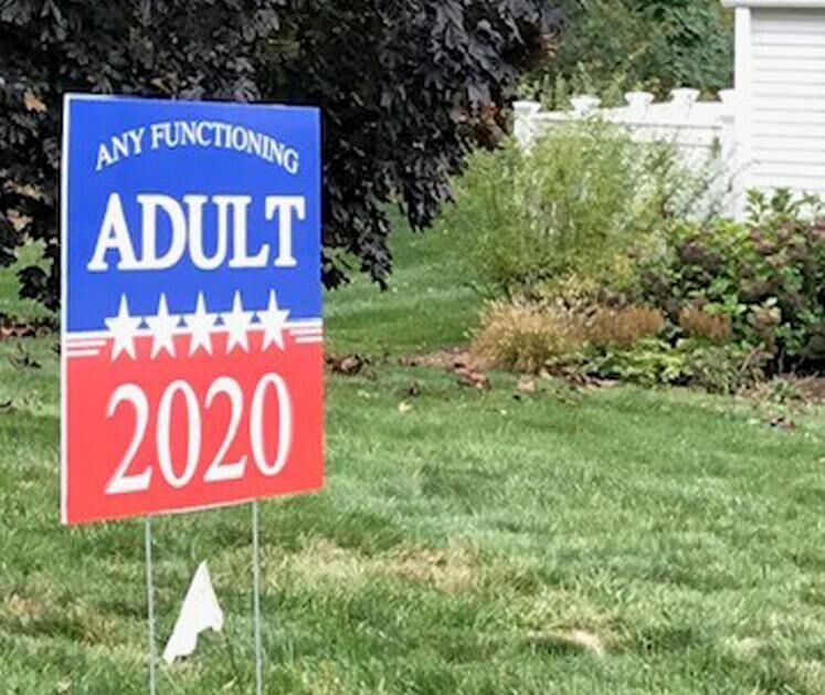 Columnist laments — sign, sign, everywhere a political sign