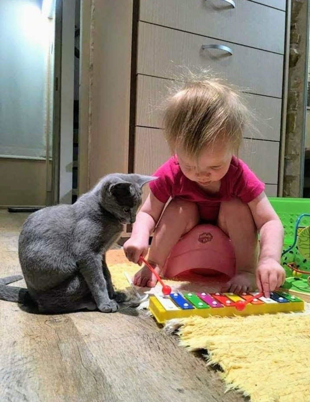 PET SENSE: When baby makes four; don't forget your four legged 'baby'