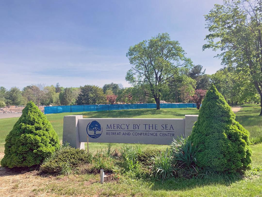 Former Our Lady of Mercy School demolished; land to return to natural state