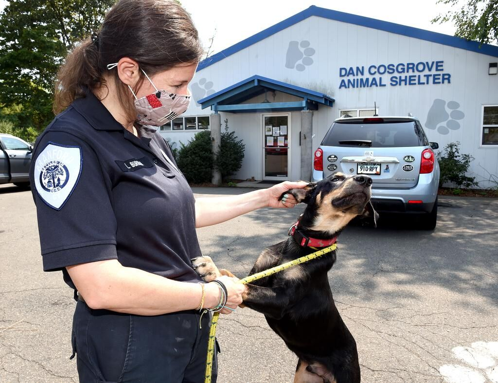 'What we do changes the world.' Now they need funds to get new Dan Cosgrove Animal Shelter built