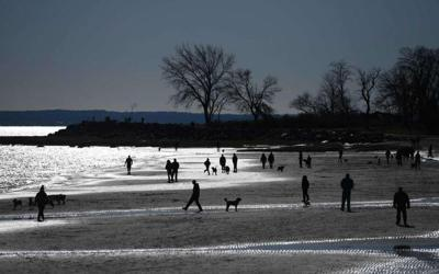 'To protect and restore the Sound:' Research projects seek to improve water quality