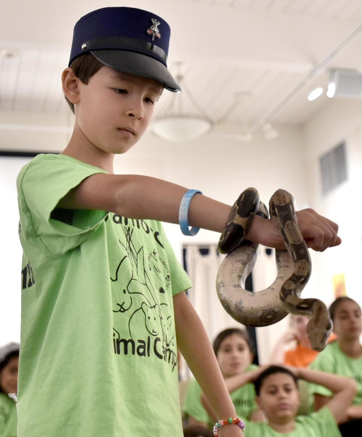 Making new friends at Animal Camp in Branford