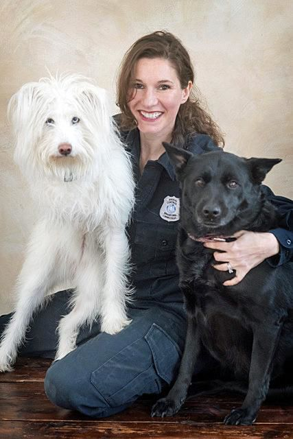 LAURA BURBAN: Allow your new shelter rescue time to decompress