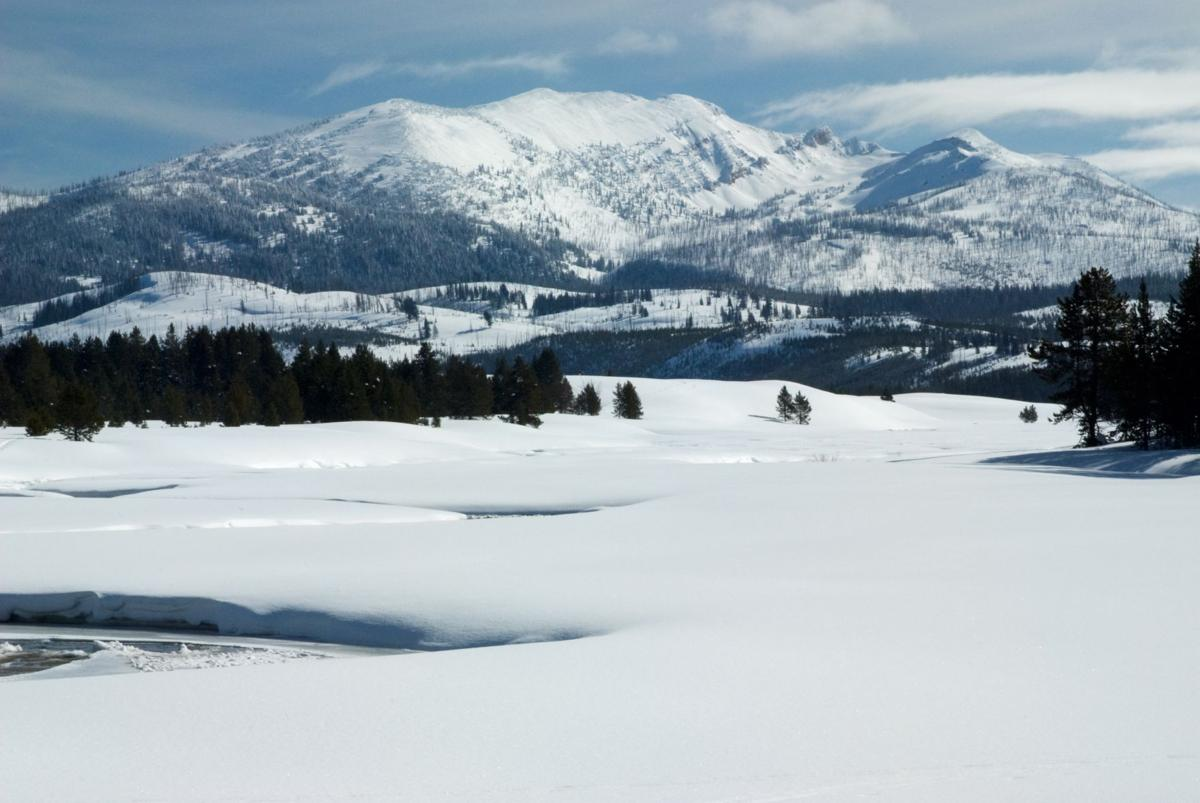 Montana winters aren't for wimps   Agriculture   sidneyherald.com