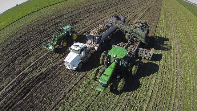 Area sugar beet growers have huge impact