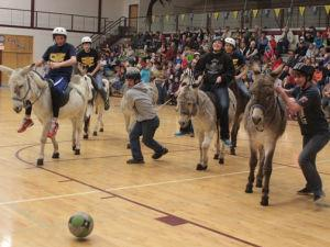 Donkey basketball highlights