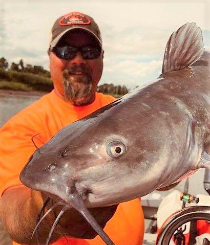 Brad's Bites: Flows Up, Catfish Turning On