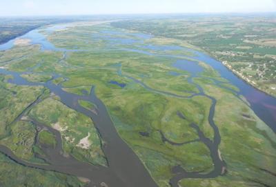 Lewis and Clark Lake sediment