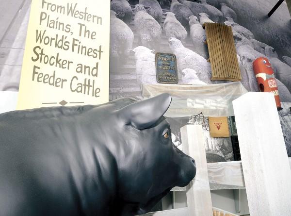 Progress New Sioux City Pulic Museum