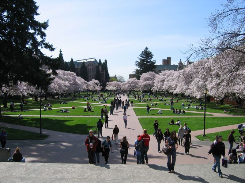 Colleges That Offer the Most Undergraduate Majors