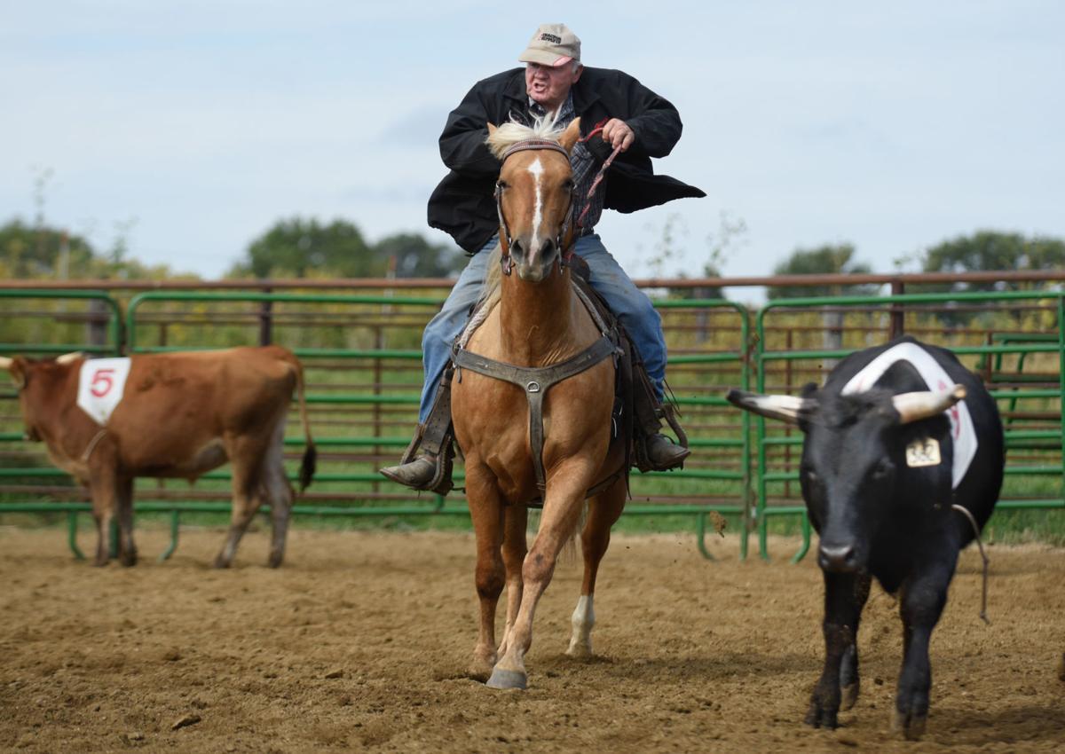 Harold Fischer Horse Penning