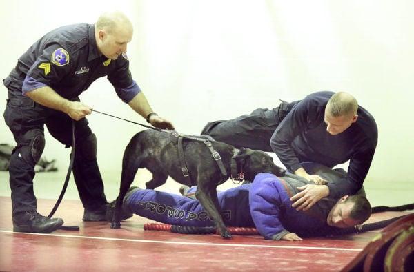 Dog Training Sioux City Ia