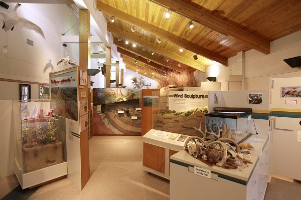 Dorothy Pecaut Nature Center to change exhibits