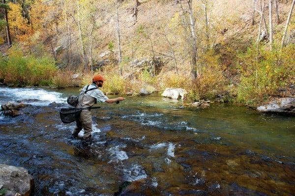 Fly fishing black hills 39 spearfish creek outdoors for Black hills fly fishing