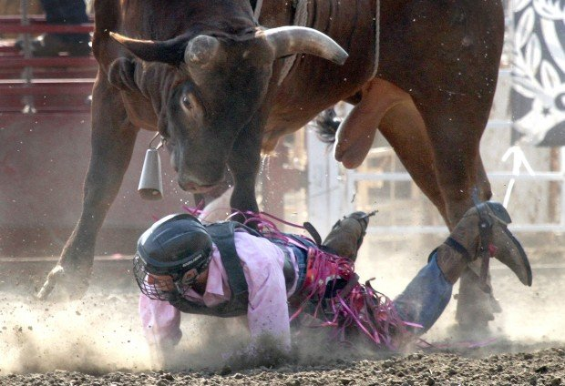 Photos Iowa High School Rodeo Local News