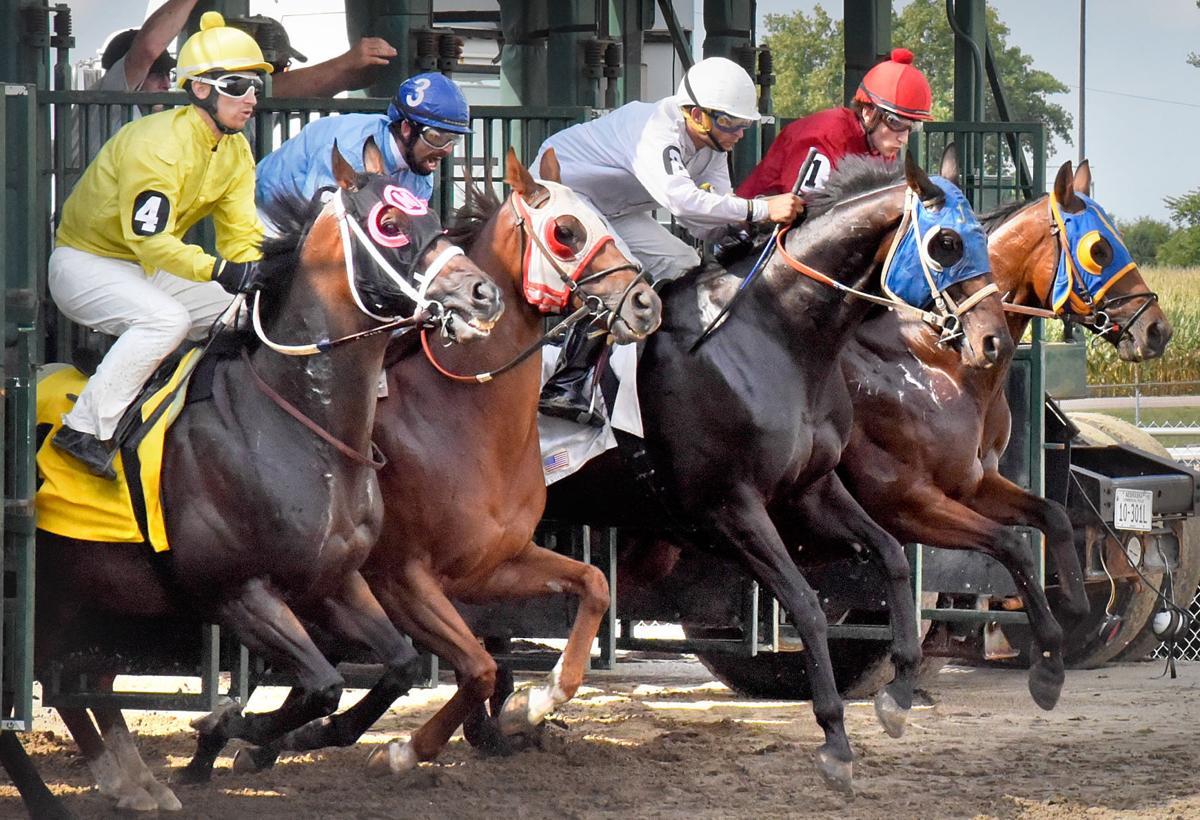 Atokad Park Horse Race
