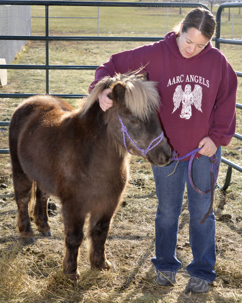 Animal Adoption and Rescue Center unusual animals