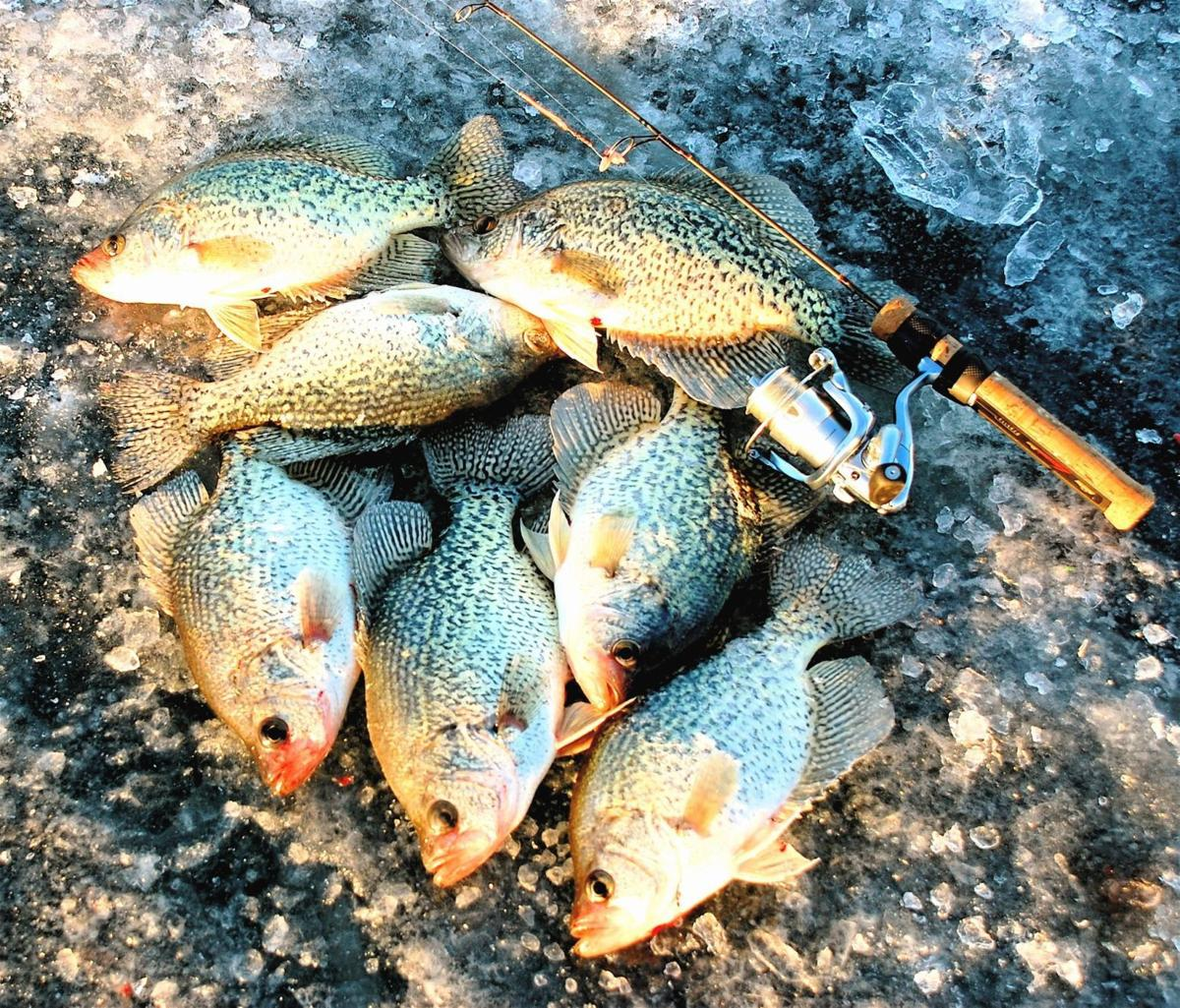 MYHRE: Catch 'happy hour' farm pond crappies | Outdoors