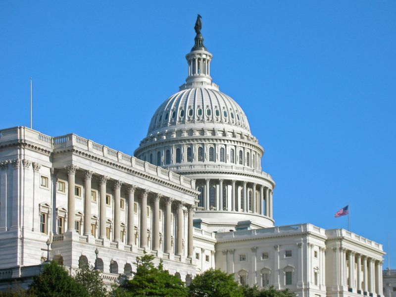 Colleges That Produce the Most Members of Congress