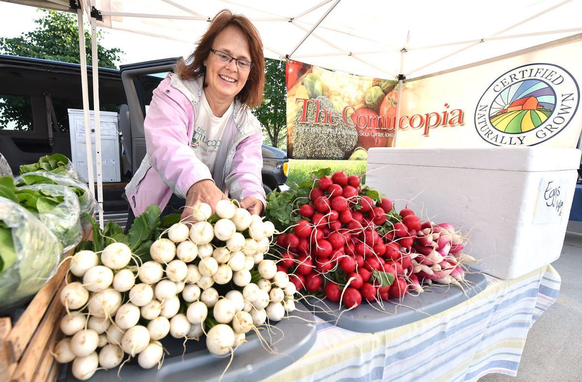2015 Sioux City Farmers Market