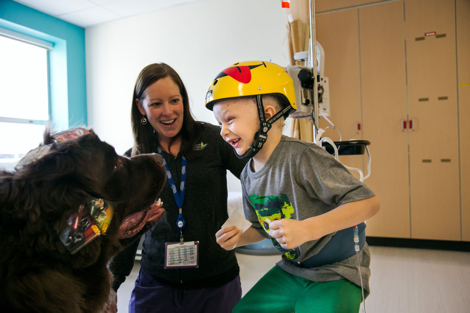 Image of: Esa Life Petsemotionalsupport La Shutterstock Trained Guide Dogs Often Welcome But Emotional Support Animals May