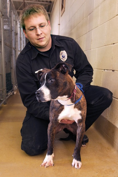 Sioux City pitbull ban