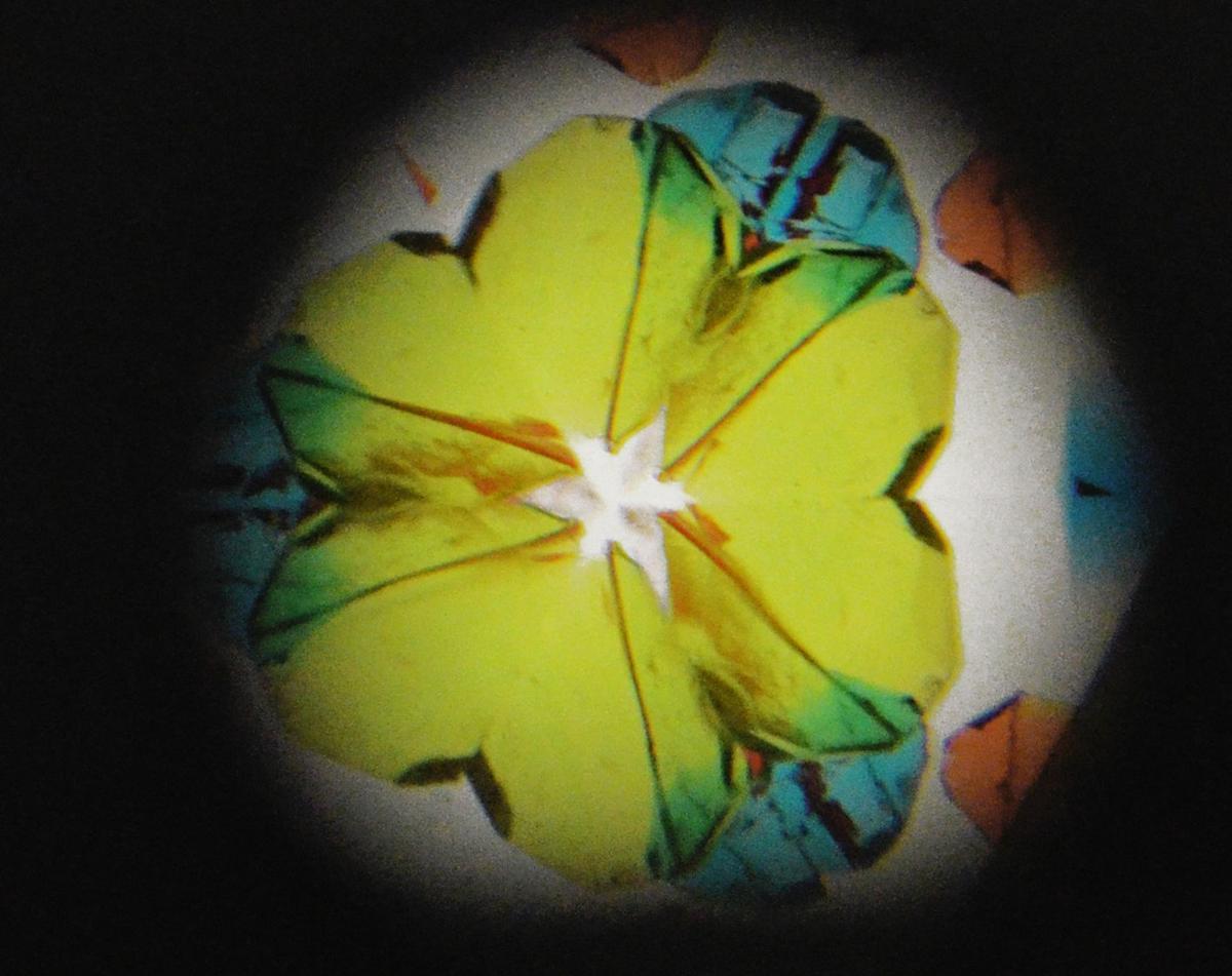 Susan Young Kaleidoscope