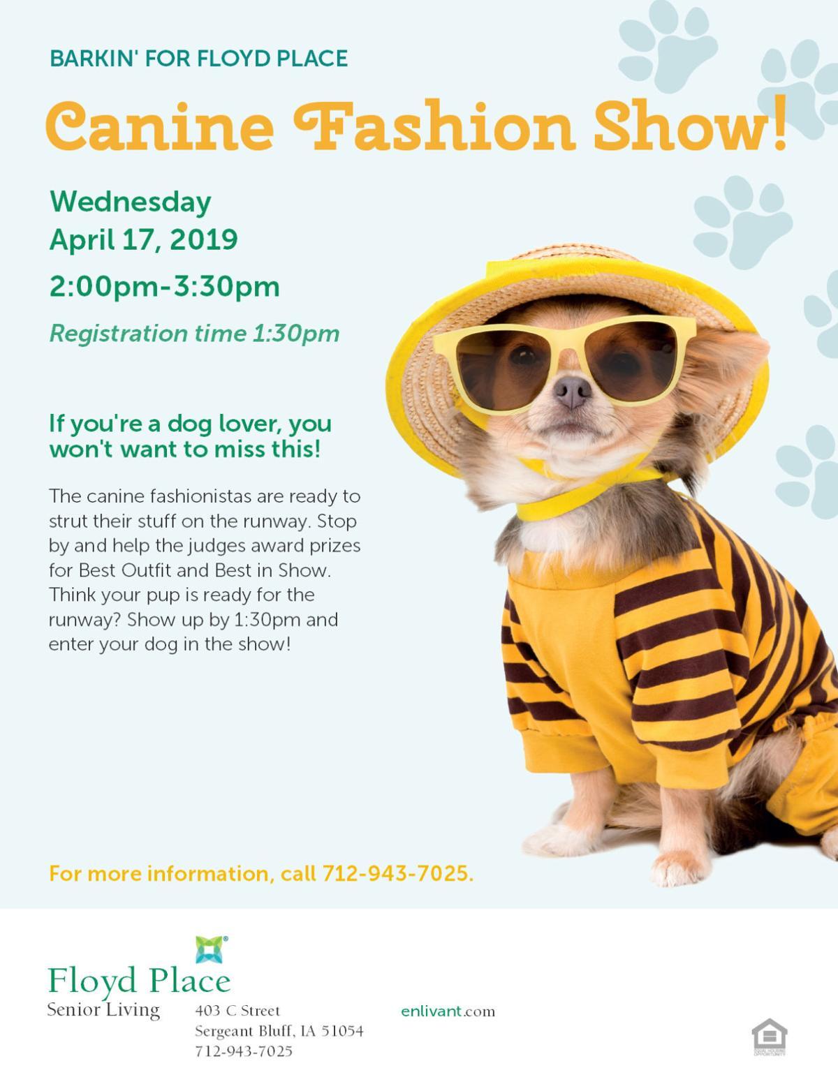 Floyd Place Canine Fashion Show