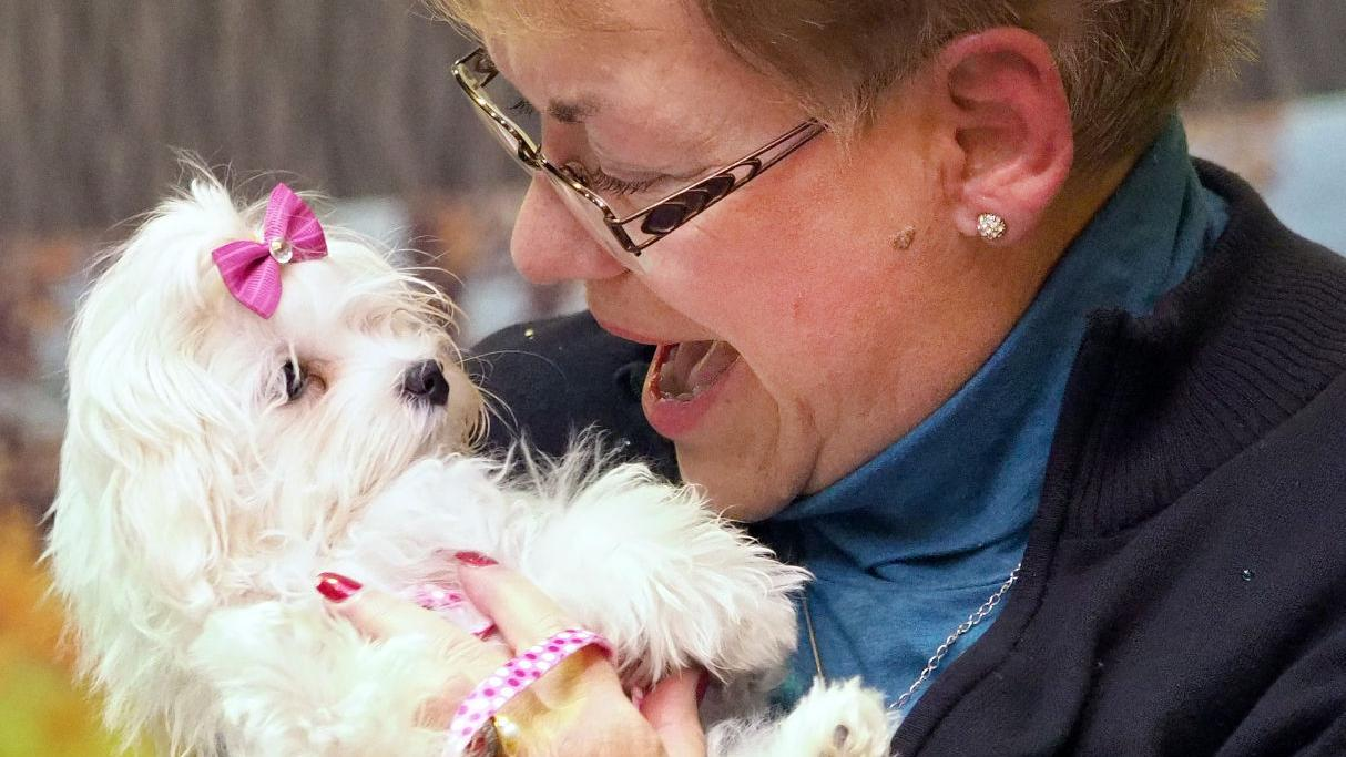 Samantha sells for $15K at Little Yellow Dog auction