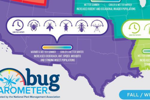This Chart Shows The Pests You Should Worry About In The Coming Months