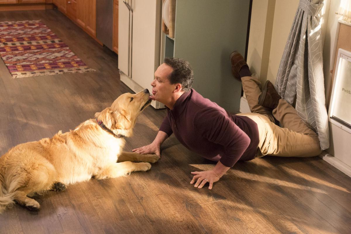 f288f72a39b Diedrich Bader scores as TV s best supporting dad